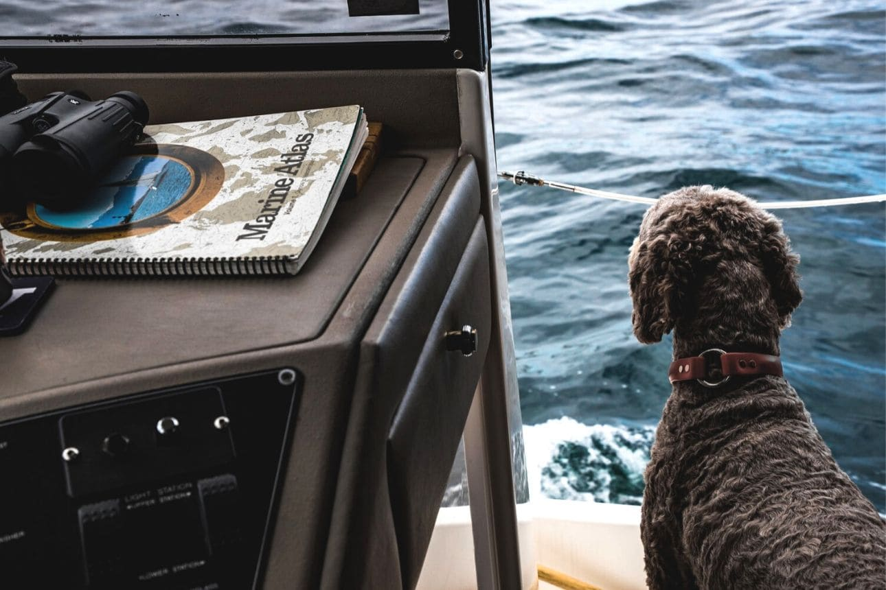 Vivere in barca a vela